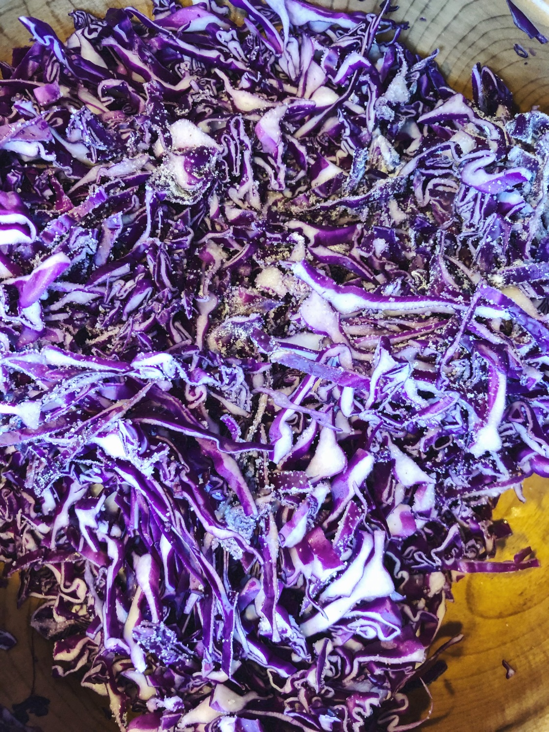 shredded red cabbage kraut