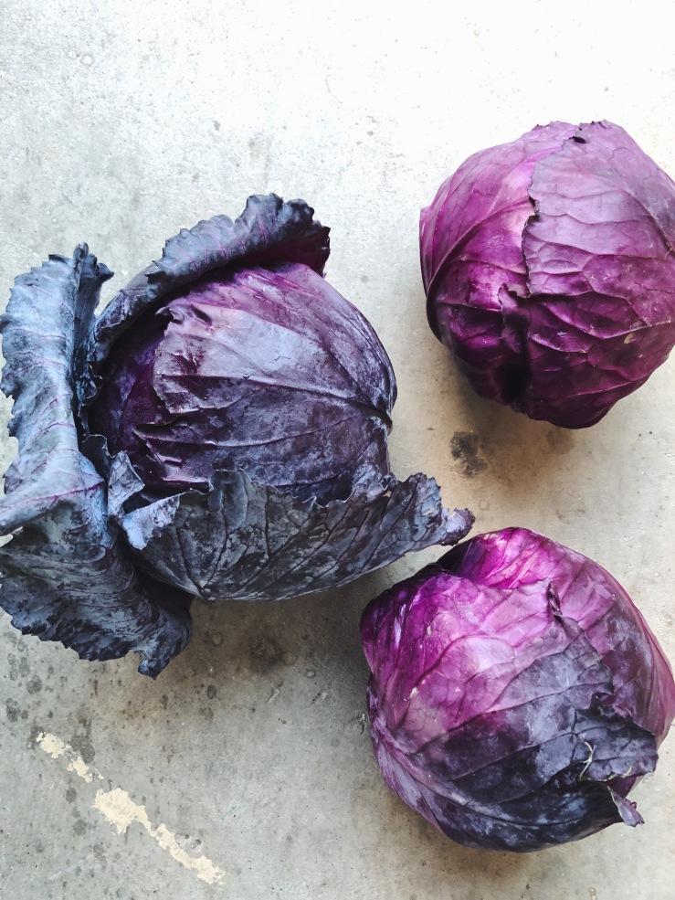 purple cabbage vegan kraut raw probiotic
