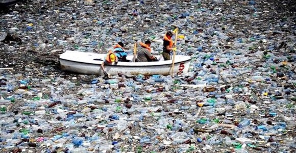 Ocean pollution plastic single use zero waste vegan