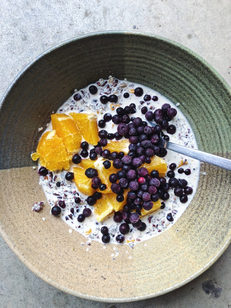 burcha bowl oranges blueberries omega 3 vegan