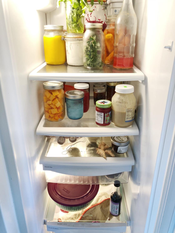 VegAn zero waste fridge