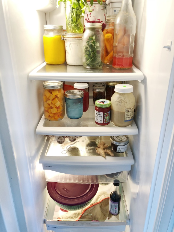 VegAn zero waste fridge