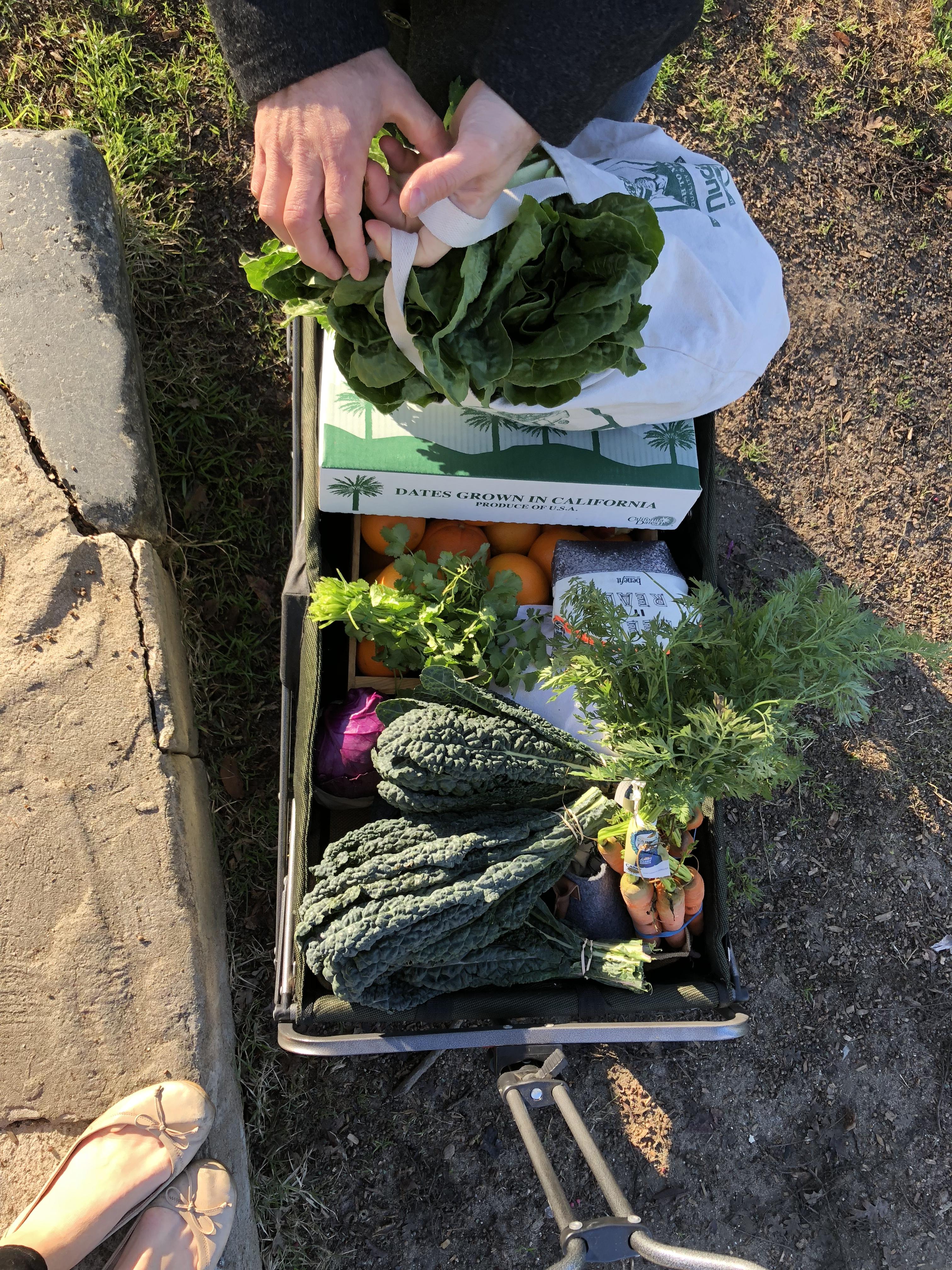 Farmers market plastic free