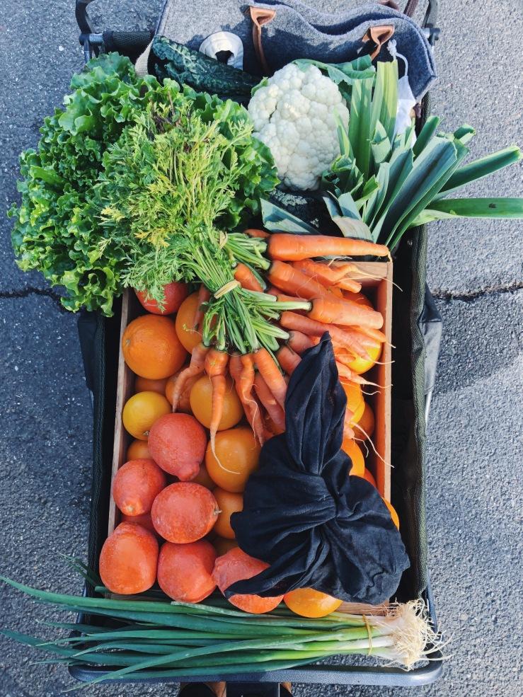 plant Based zero waste farmers market california winter