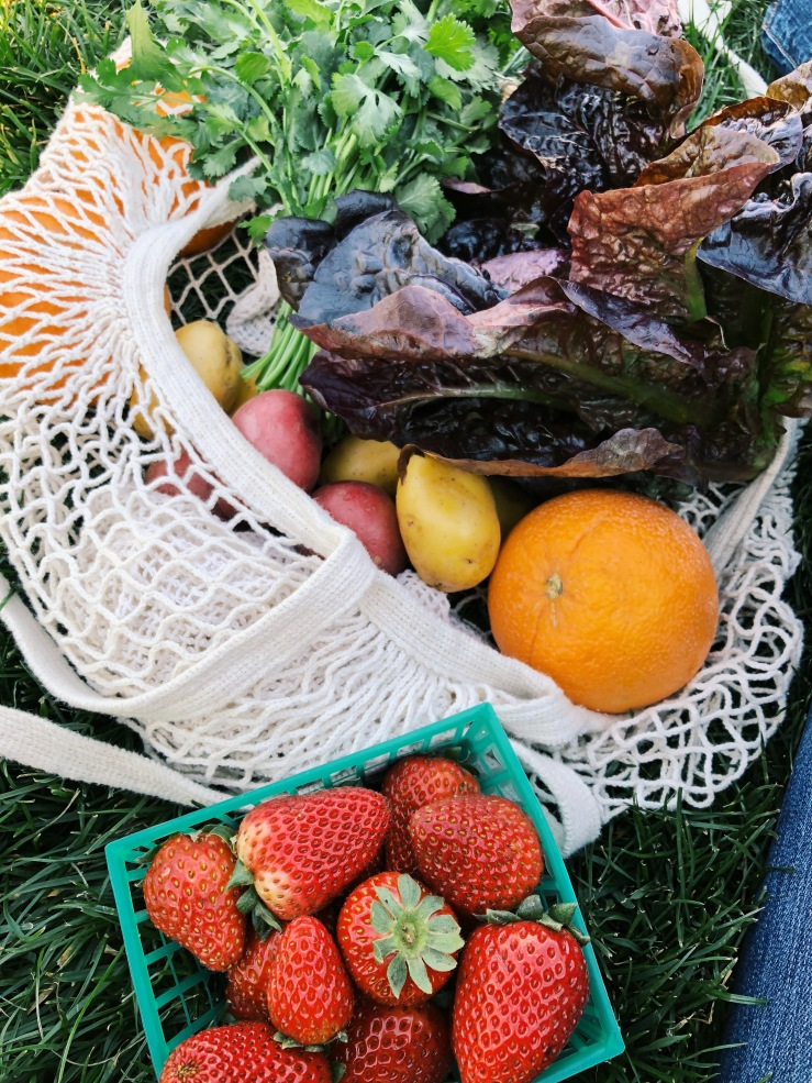 Farmers market zero waste California