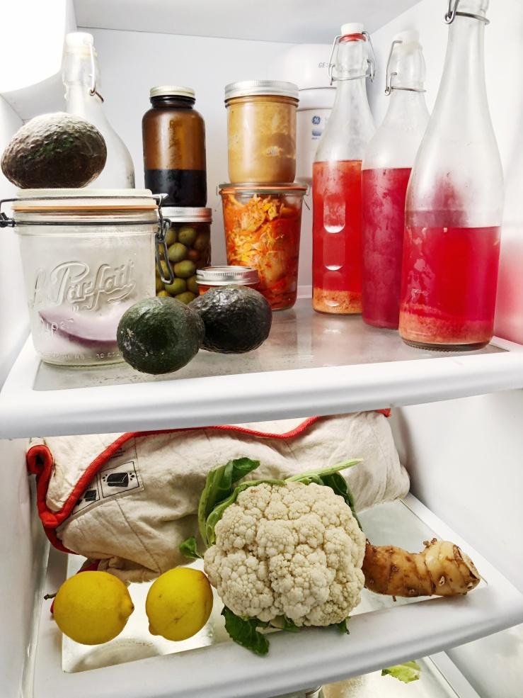 plastic free fridge