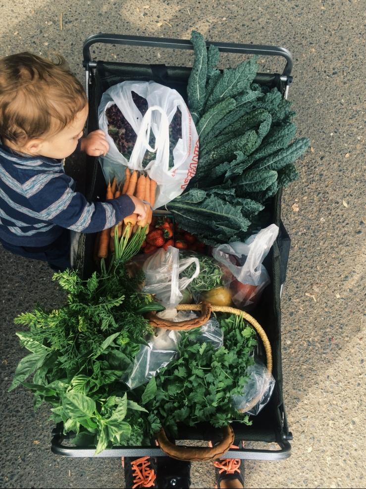 plastic bags farmers market
