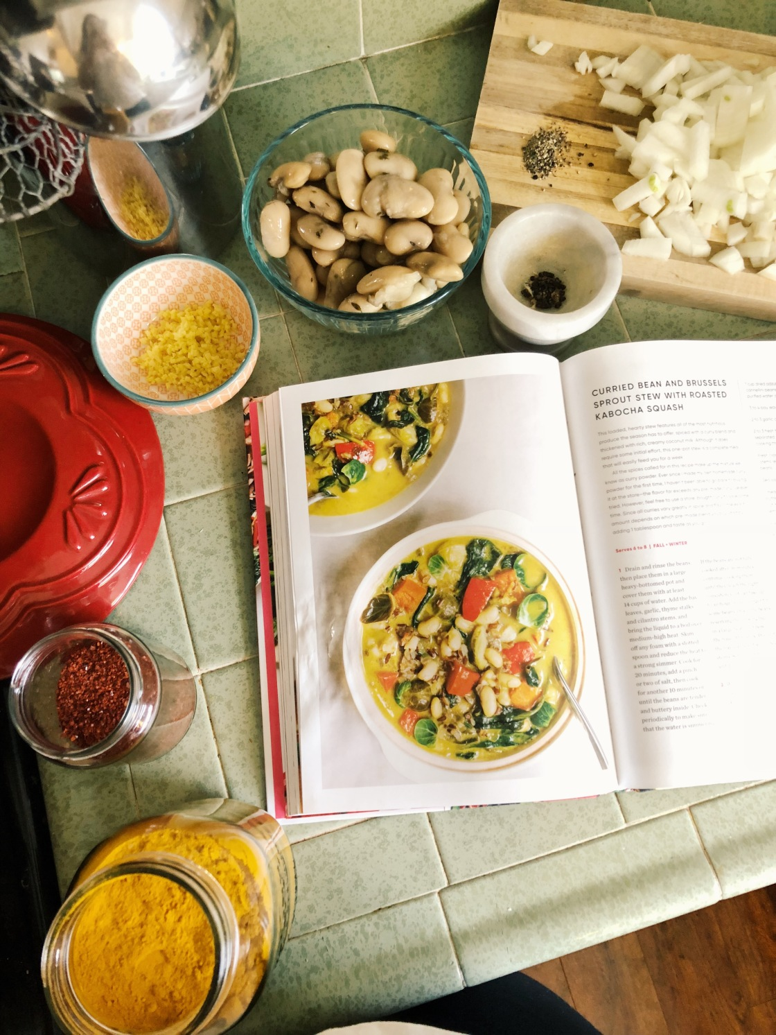 Simply vibrant cookbook vegan