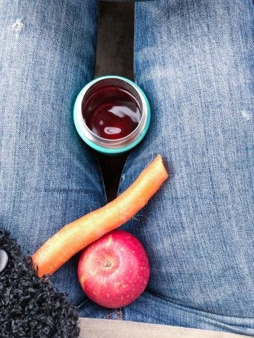 vegan snack on the go apple carrot
