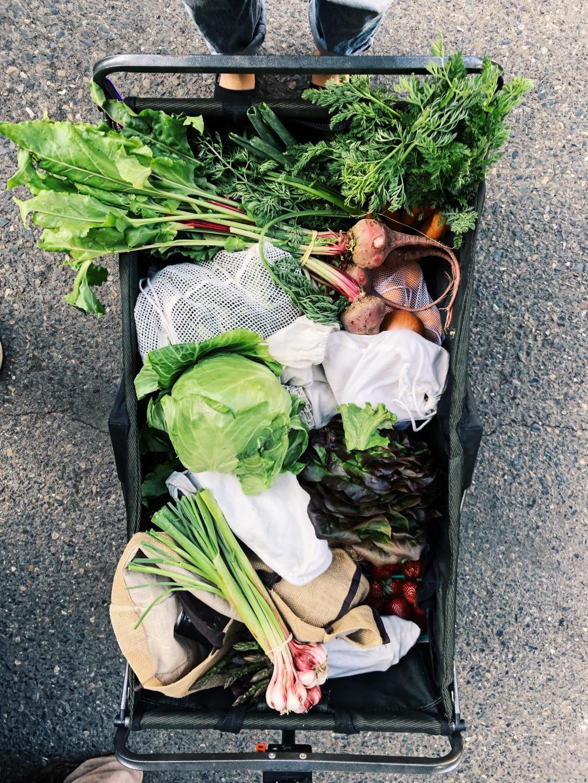 zero waste vegan farmers market cart