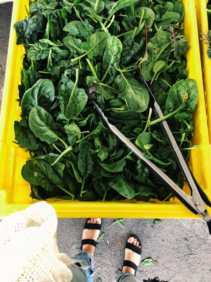 spinach farmers market California vegan zero waste