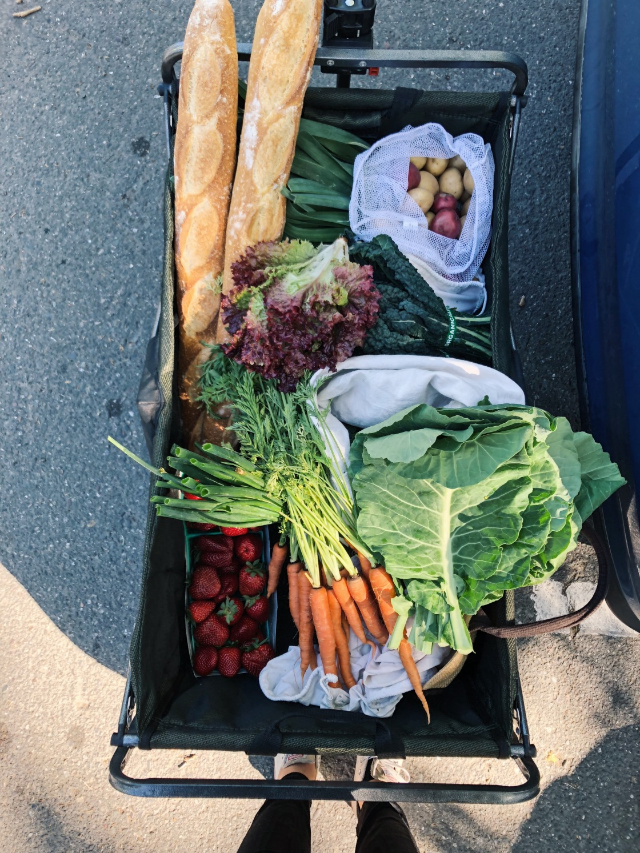 farmers market haul spring plastic free