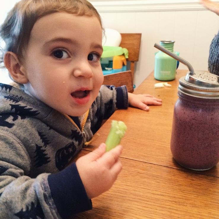 Blueberry smoothies kids vegan