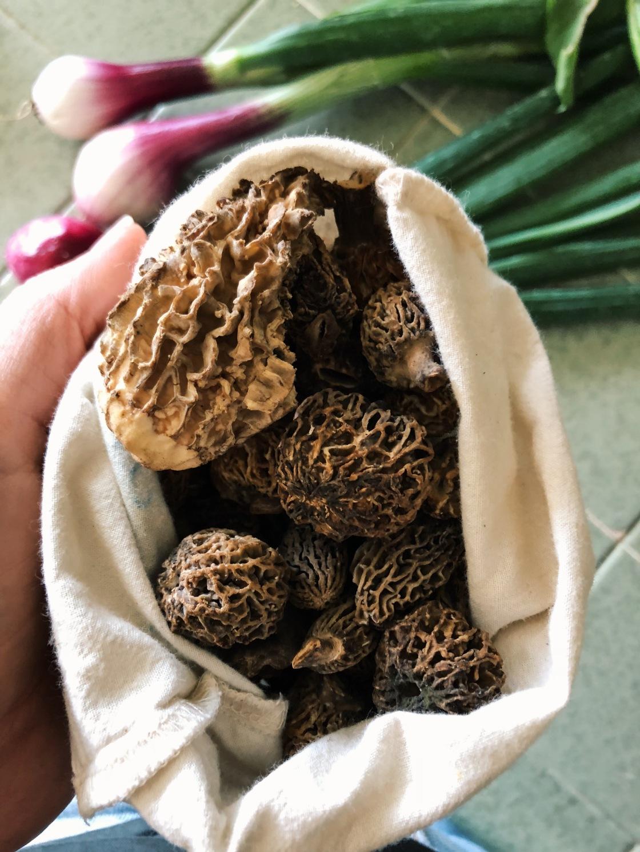 morel Mushrooms vegan zero waste