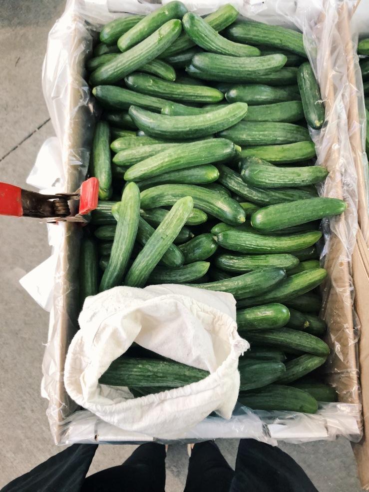 zero Waste cucumber