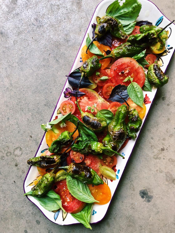 shisito pepper salad vegan first course prime piatti zero waste