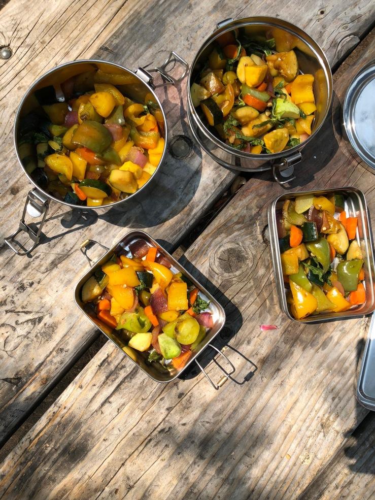 zero waste lunch tiffin camping vegan